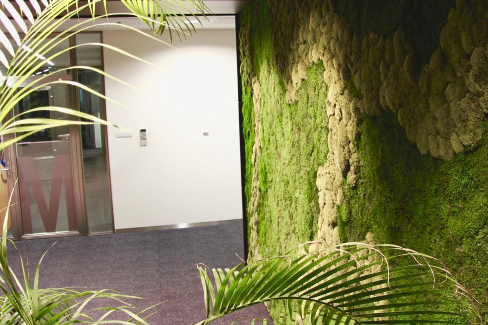 Detail na machovú stenu