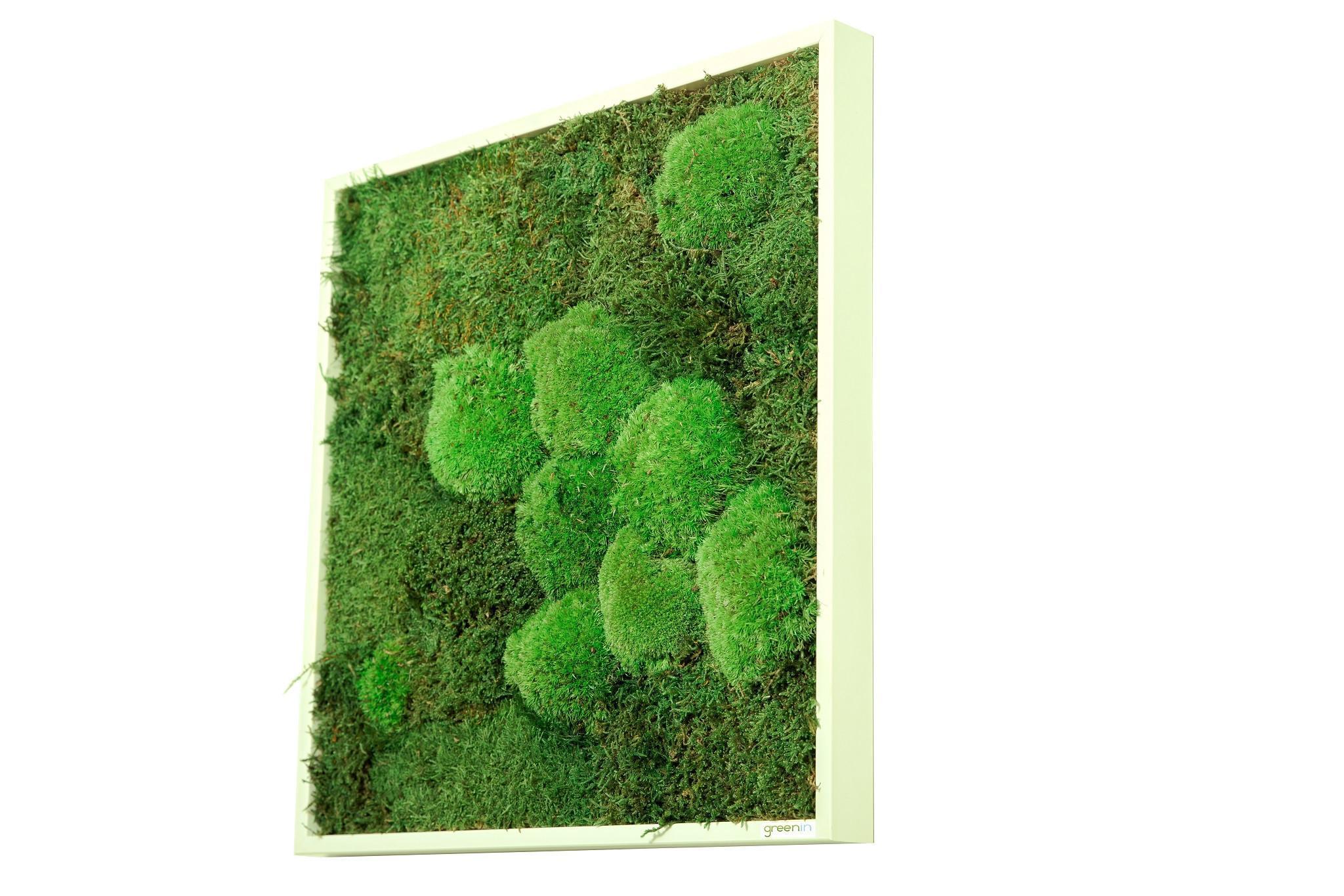 Machový obraz GREENIN wood