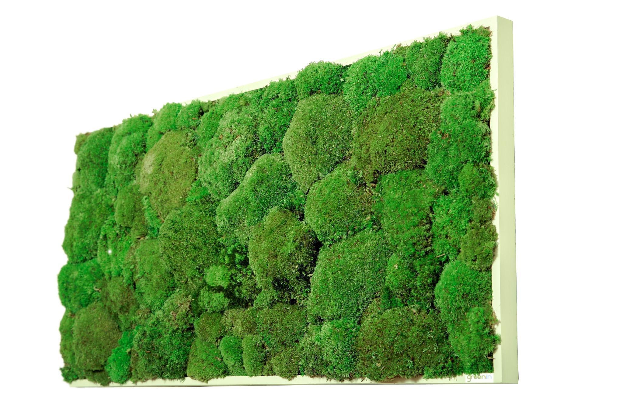 Machový obraz GREENIN hill