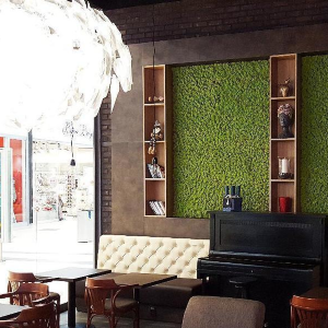 Machové steny a obrazy - kaviarne a reštaurácie
