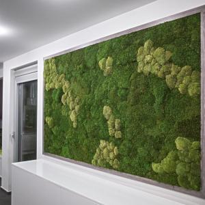 Zelené osvieženie interiéru