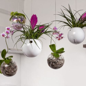 Závěsné květináče Evervit řad Flying Orchids a Jungle