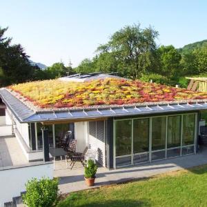 Päť dôvodov, prečo si vybrať vegetačnú strechu