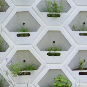 Prvá ekologická stena