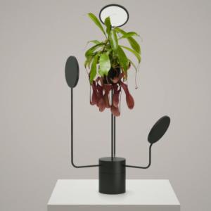 Kolekcia Viride vytvorená dizajnovým štúdiom Goula Figuera