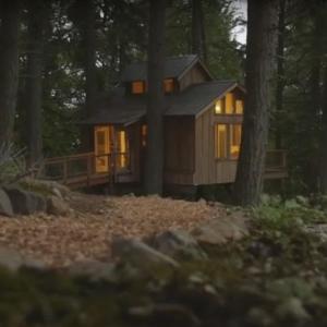 Chcel by si bývať na strome?
