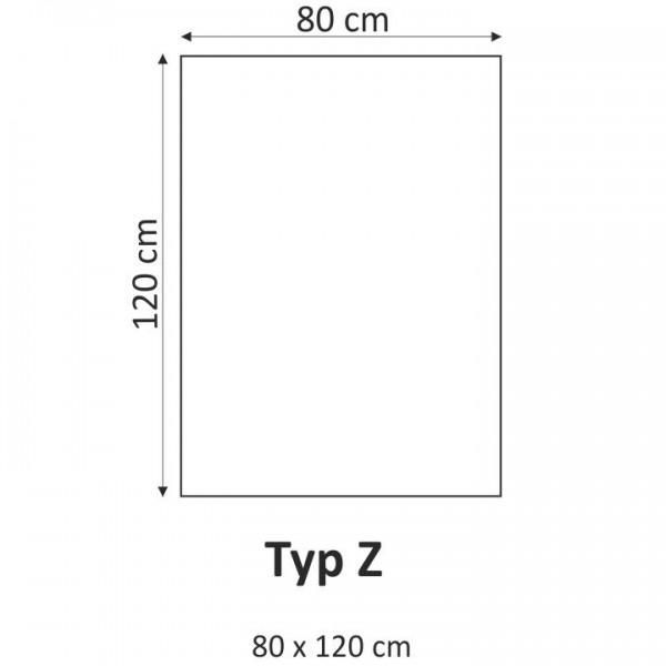 TEMPO KONDELA Obraz, s motívom, 80x120 TYP Z, T008