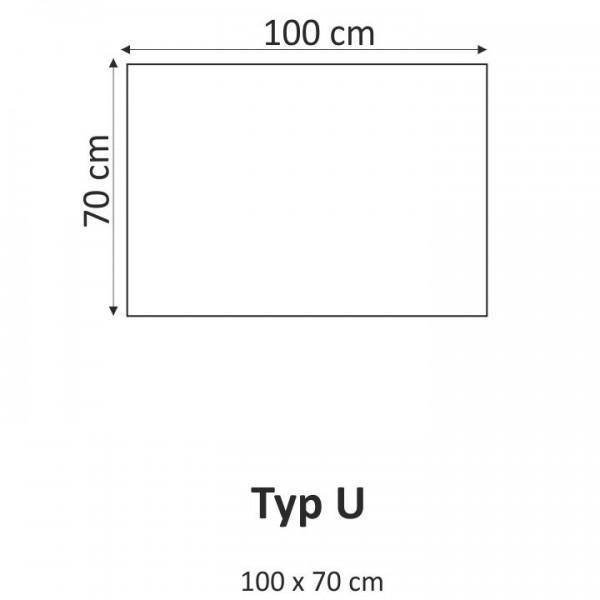 TEMPO KONDELA Obraz, s motívom, 100x70 TYP U, F000586F
