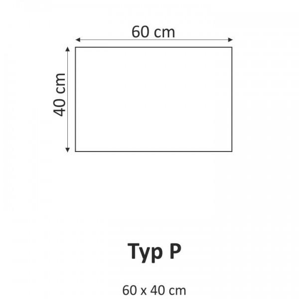 TEMPO KONDELA Obraz, s motívom, 60x40 TYP P, F001360F