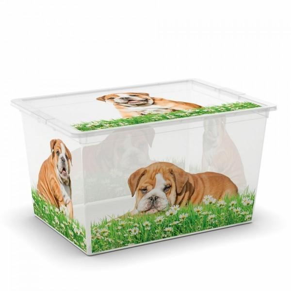 KIS C Box Puppy & Kitten XL, 50 L