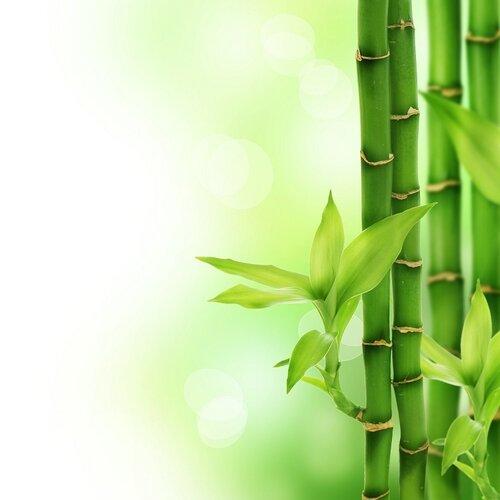 Viscopur Matracová podložka Bamboo, 140 x 200 cm